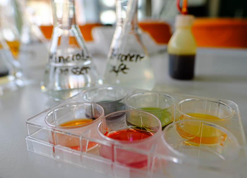 experimente mit wasser und farben